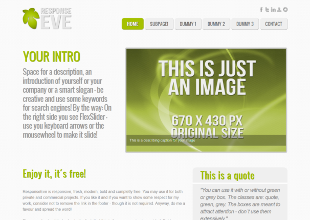ResponseEve theme [Free Html5 and Css3 Templates]