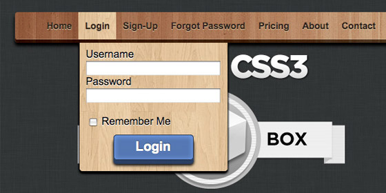 CSS3 Drop Down Menu With Integrated Forms
