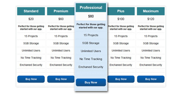 CSS3 Pricing Table (1)