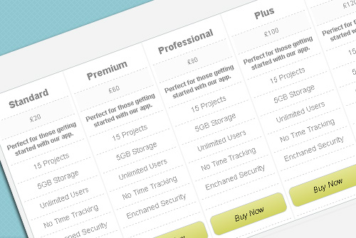 pricing-css-html-table5