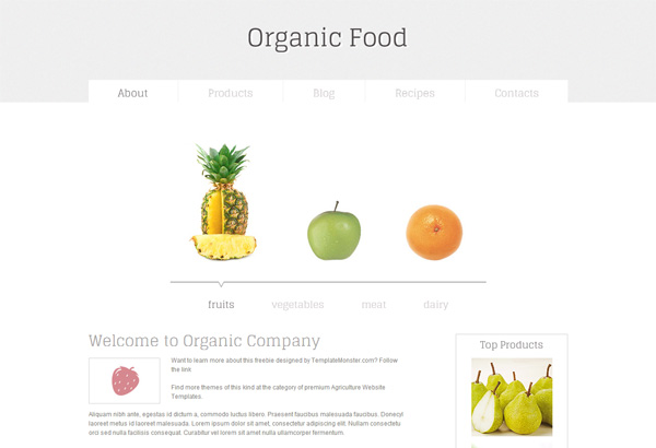 organic food free html5 css3 templates themes