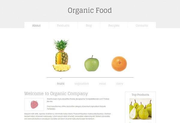 organic food free html5 css3 templates themes