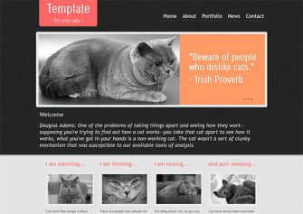 CatTemplate – Free Html5 Template