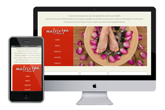 The Matrix Spa for Website Template Home w3layouts