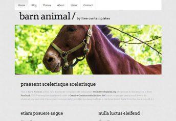 BarnAnimal – Free Css Template