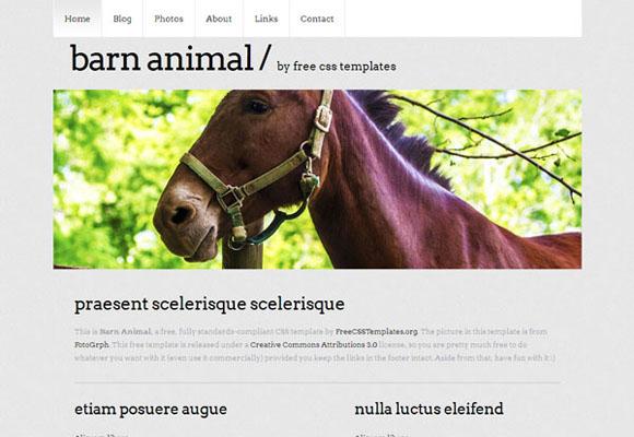 barn-animal html template
