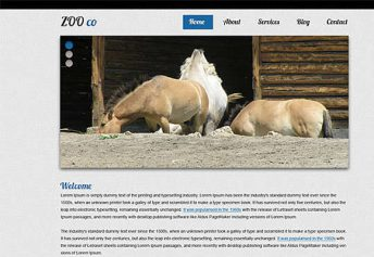 ZooCo – Free Css Template