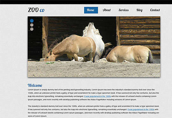 zooco html template